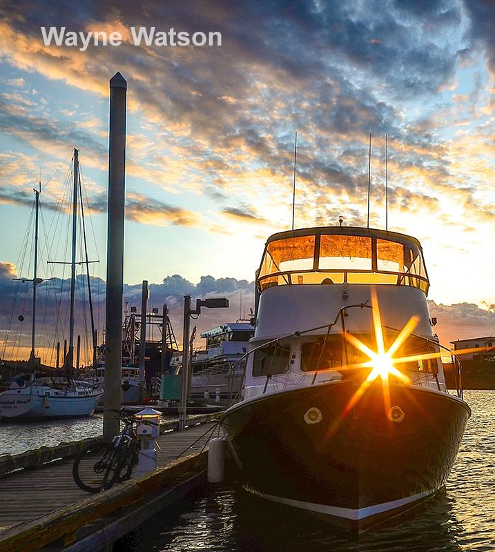 2017-Wayne-Watson_OptWMc